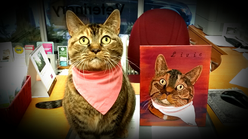 cat-and-painting